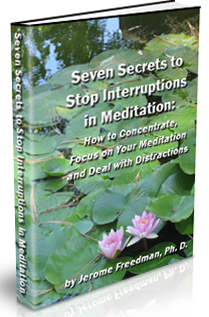 Seven Secrets to Stop Interruptions in Meditation: How to Concentrate and Focus on Your Meditation and Deal with Distractions